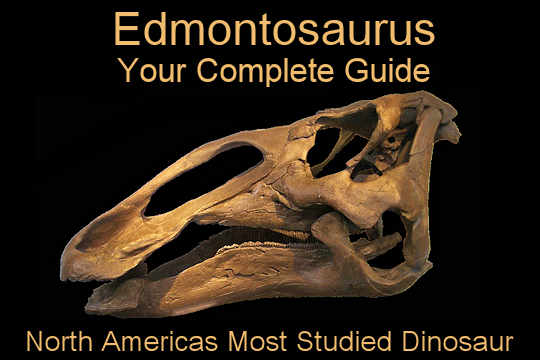 Complete Guide to the Edmontosaurus Dinosaur