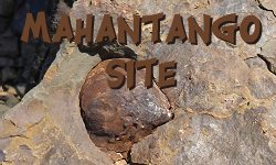 Learn about the Mahantango Formation and its Fossils
