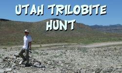 Utah Trilobite Hunt