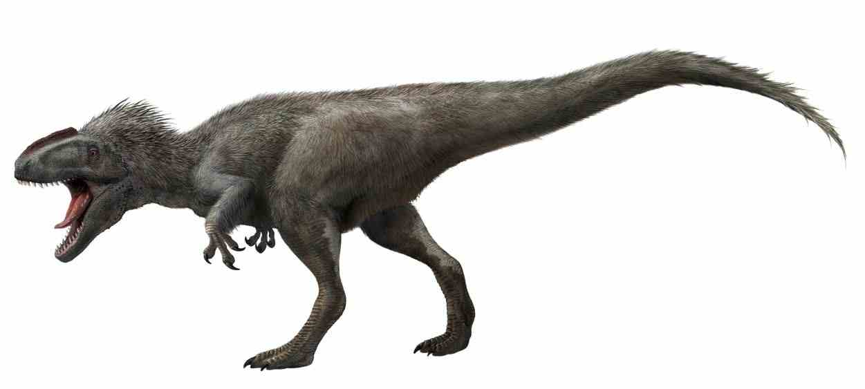 illustration of the feathered tyrannosaur dinosaur by Lida Xing and Yi Lui