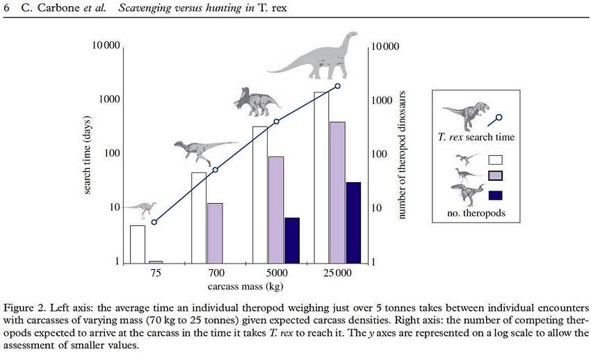 T-Rex: Tyrannosaurus Dinosaur Facts and Information - All About T ...