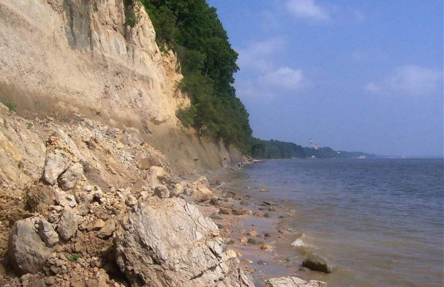 Calvert Cliffs Fossils: Fossil Shark Teeth and other Fossils from ...