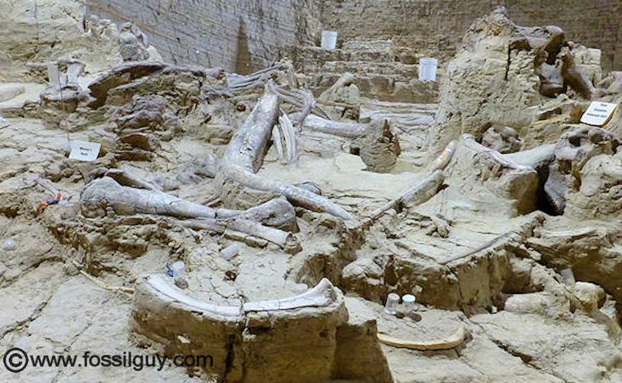 dig Amateur south dakota archeology