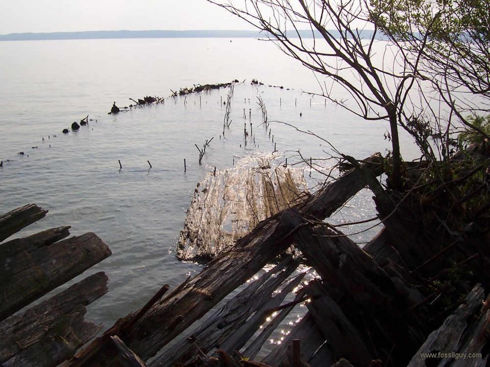 Potomac landings