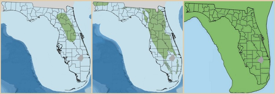 Venice Fossil Shark Teeth And Other Fossils Finding Fossils - Venice beach florida map
