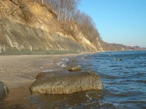 Calvert Cliffs Fossil Site - Maryland